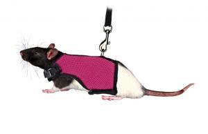 Trixie Soft Harness with Lead - Нагръдник за гризачи 12 - 18 см