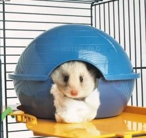 Savic Hamster Iglo Къщичка за хамстери - синя 1