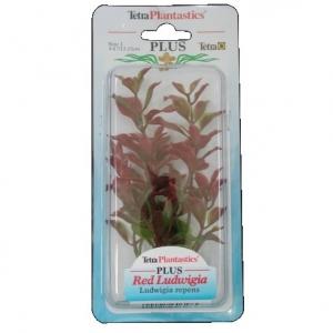 Tetra Растение за аквариум червена лудвигия
