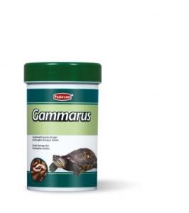 Padovan Gammarus Храна за костенурки - скариди 1