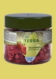 JR Farm Храна за костенурки - ягоди, 10 гр.