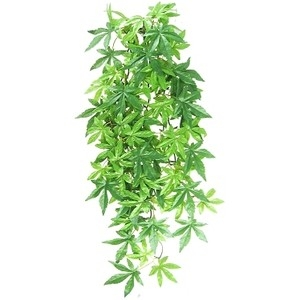 Exo Terra Висящо декоративно растение за терариум - Abuliton L 1