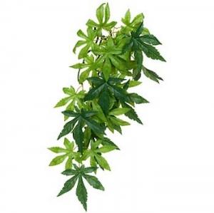 Exo Terra Висящо декоративно растение за терариум - Abuliton S 1