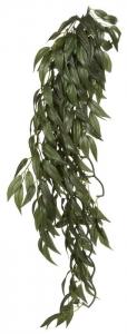 Exo Terra Висящо декоративно растение за терариум - Rucus L 1