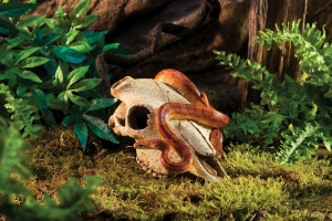 Exo Terra Декоративен череп на говедо 4