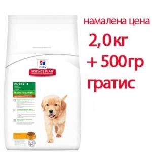 Hill's Science Plan Large Breed Puppy с пилешко – Пълноценна суха храна за големи породи кучета от отбиване до 1 година. За бременни и кърмещи кучета /с пилешко/. 3кг 1