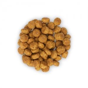 Hill's Science Plan Canine Mature Adult Active Longevity Mini Chicken – Пълноценна суха храна за кучета от дребни породи на възраст над 7 години /с пилешко/. 7.5 кг 2
