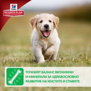 Hill's Science Plan Canine Puppy Mini с пилешко – Пълноценна суха храна за дребни породи кучета от отбиване до 1 година. За бременни и кърмещи кучета /с пилешко/. - 3 кг 4