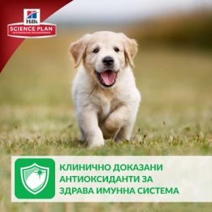 Hill's Science Plan Puppy Medium с пилешко – Пълноценна суха храна за средни породи кучета от отбиване до 1 година. За бременни и кърмещи кучета /с пилешко/. - 12 кг 4