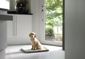 Savic starter kit large Хигиенен комплект за малки кученца 60/45 см.