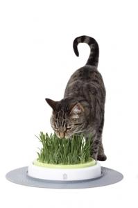 Hagen Catit Градинска трева за котки - Design Senses Grass Garden Kit 1