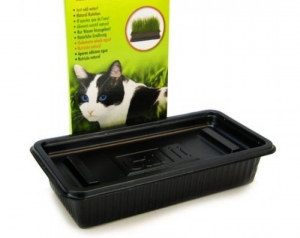 Hagen Catit Засята Котешка трева - Catit Cat Grass - 85 g 1