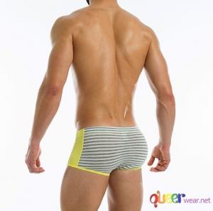 striped flash brazil boxer 3