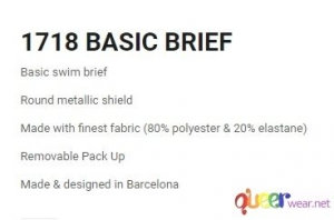 BASIC BRIEF 6
