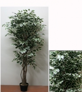 Изкувствено дърво БЕНДЖАМИН ШАРЕН, 1.80м.