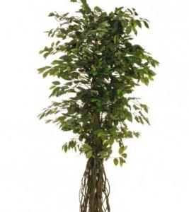 Изкуствен Бенджамин зелен лиана, 2.10м